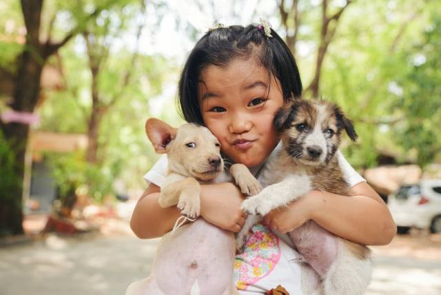 Tips Atasi Alergi Bulu Hewan Peliharaan pada Anak (37790)