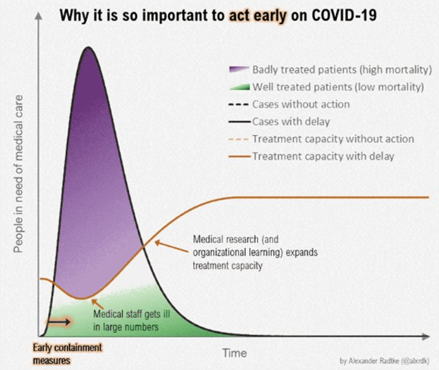 Bom Waktu itu Bernama Coronavirus: Apa yang Kita dan Pemerintah Harus Lakukan? (540492)