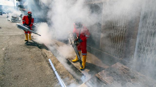 Ilmuwan Modifikasi Nyamuk Penyebar DBD di Indonesia, Buat Apa? (130224)