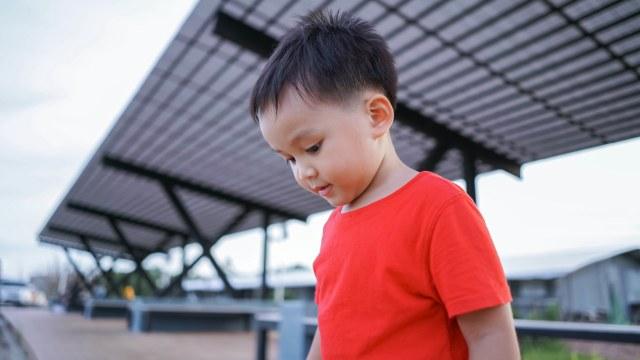 Penyebab Autisme pada Anak (519027)