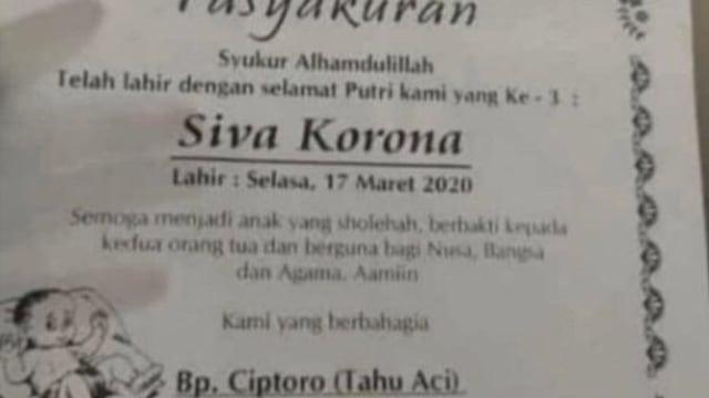 siva korona(2).jpg