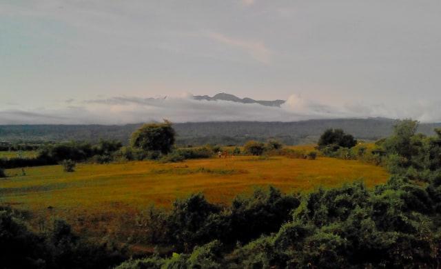 14 Fakta Menarik Saat Gelegar Gunung Tambora Mengguncang Dunia Tahun 1815 (156662)