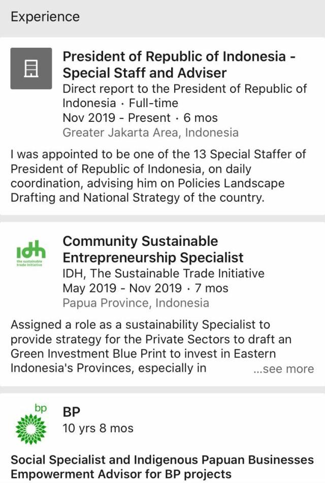 Stafsus Jokowi Billy Mambrasar Ubah Bio LinkedIn, Tak Lagi Klaim Setara Menteri (147620)
