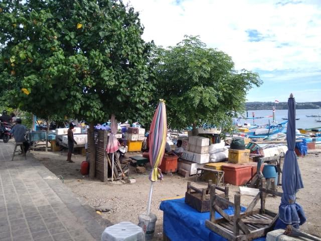 Cerita Pedagang Ikan di Kedonganan, Bali, yang Kini Merugi karena Wabah COVID-19 (28355)