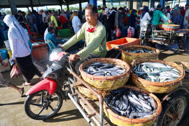 Penghasilan Nelayan Aceh Menurun Akibat Harga Ikan Anjlok Selama Pandemi Corona (78475)