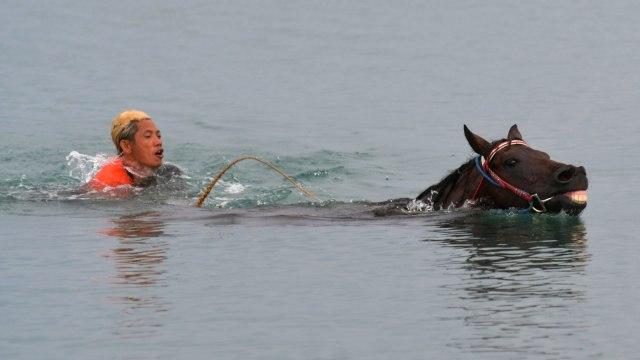 Foto: Melatih Kuda Pacu di Pantai Talise, Palu (769239)