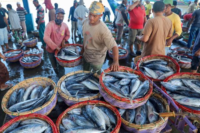 Foto: Dampak Corona, Harga Ikan Anjlok di Banda Aceh (74944)