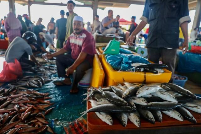 Foto: Dampak Corona, Harga Ikan Anjlok di Banda Aceh (74945)