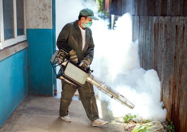 1.803 Warga Bali Terjangkit DBD di Tengah Pandemi COVID-19 (39313)