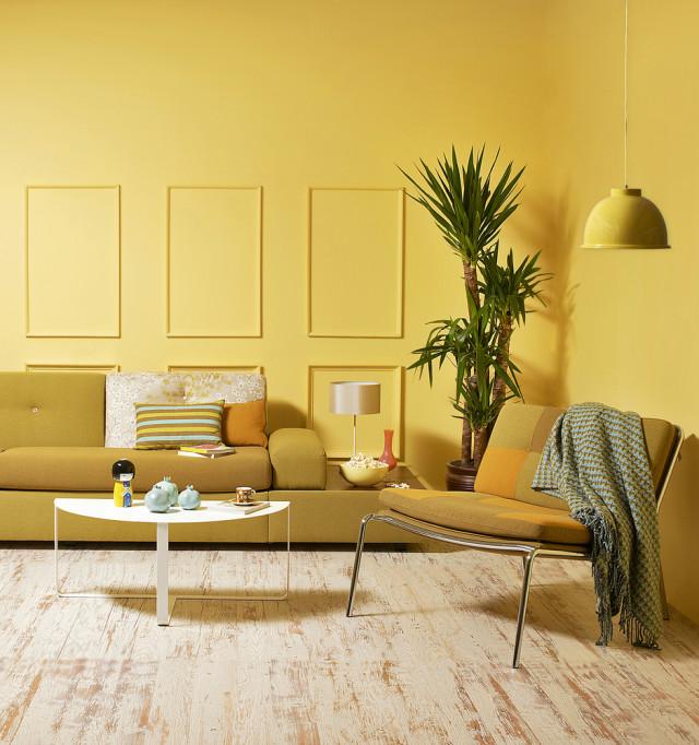 5 Warna Cat Dinding yang Bisa Bikin Suasana Nyaman dan Bahagia di Rumah (179597)