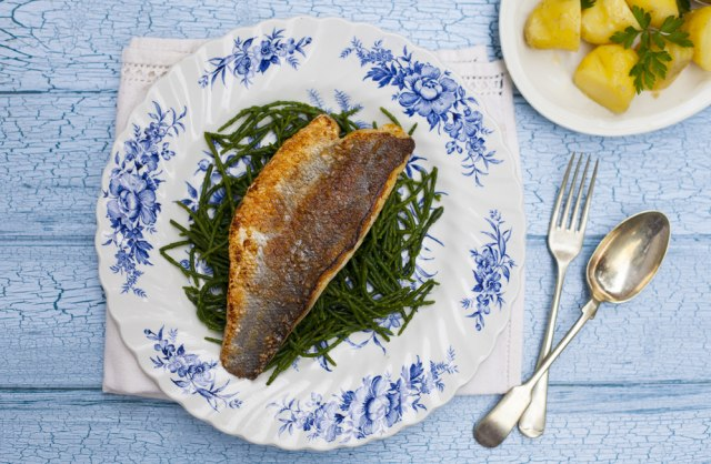 Bukan Salmon, Kata Ahli Diet Ini Jenis Ikan Paling Enak dan Sehat (447)