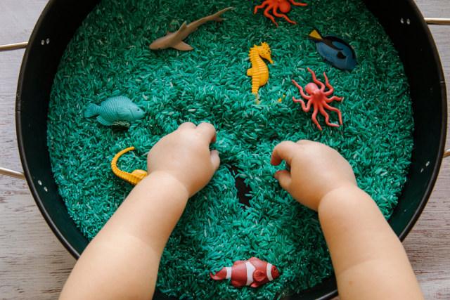 Manfaat Main Sensory Bin untuk Bayi dan Balita (50874)