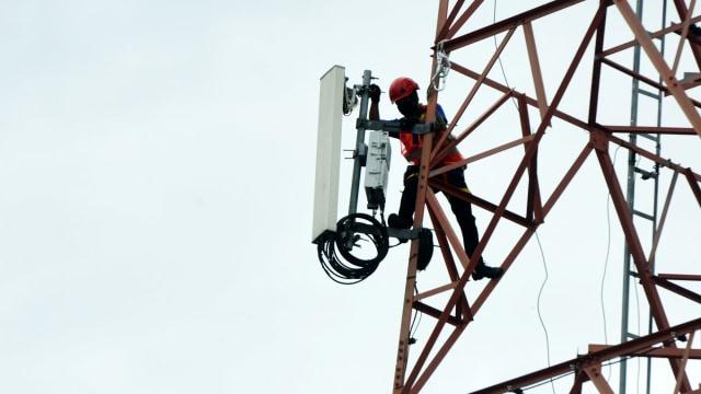 Telkomsel dan Smartfren Menang Lelang Ulang Frekuensi 5G, Ini Nilainya (178199)