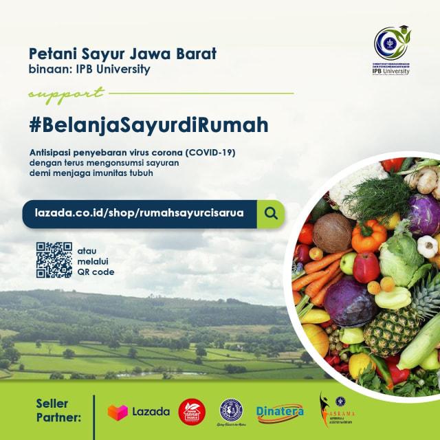 Cara Praktis Belanja Sembako dan Sayuran di E-commerce (7847)