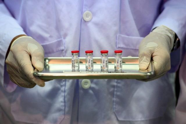Virus Corona-Thailand-Uji Vaksin kepada Monyet