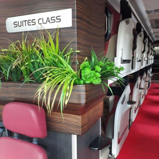 Viral! Bus Mewah dengan Desain Physical Distancing dan Punya Fasilitas bak Hotel (111455)