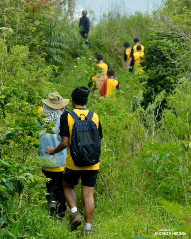Trekking Perbukitan Dusun Kopi di Garut, Jawa Barat (38633)