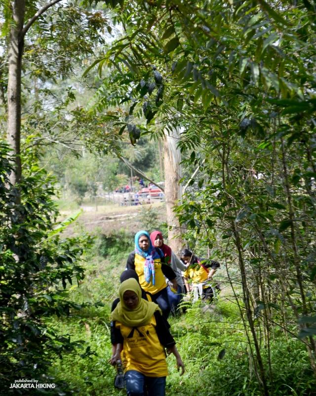 Trekking Perbukitan Dusun Kopi di Garut, Jawa Barat (38636)