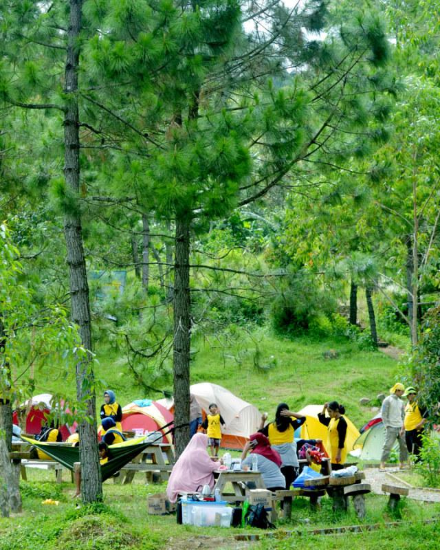 Trekking Perbukitan Dusun Kopi di Garut, Jawa Barat (38640)