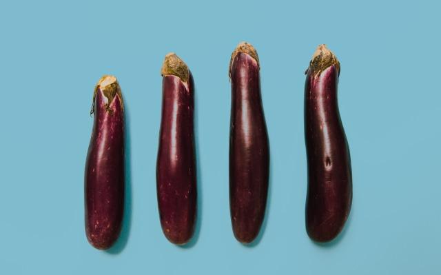Ilustrasi Ukuran Penis