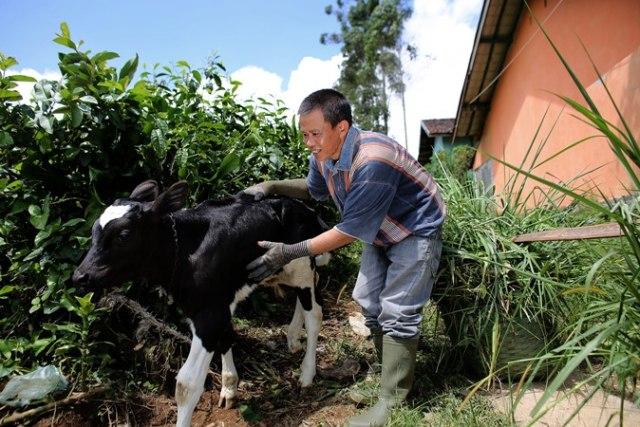 Upaya Tingkatkan Konsumsi Susu di Indonesia Demi Penuhi Kebutuhan Protein Anak (28739)