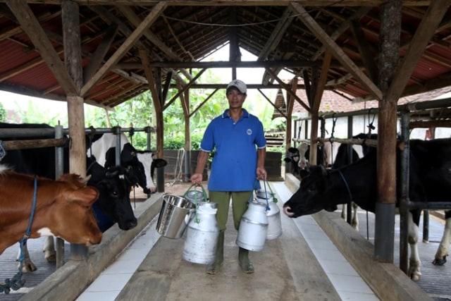 Upaya Tingkatkan Konsumsi Susu di Indonesia Demi Penuhi Kebutuhan Protein Anak (28740)