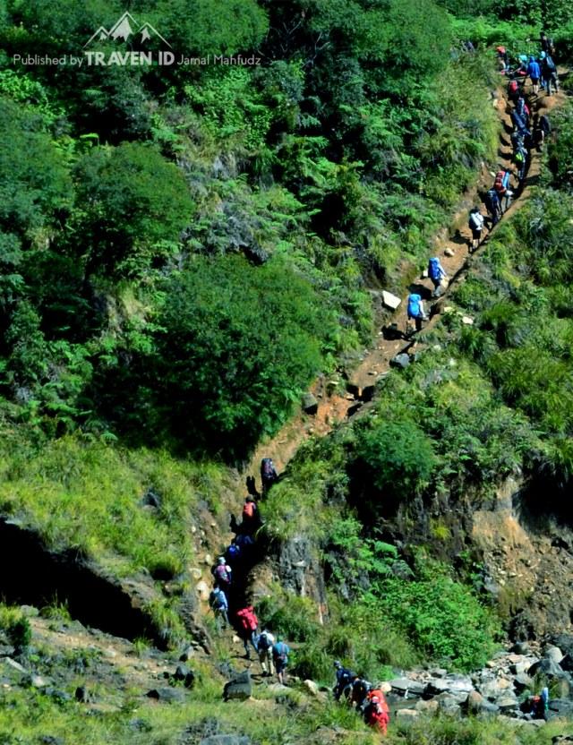 Menikmati Pendakian Gunung Papandayan di Garut (10535)