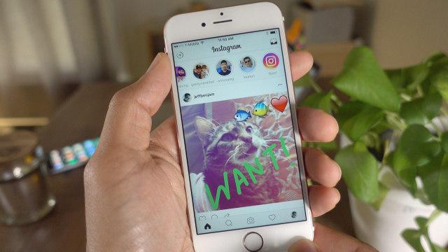 Auto Followers Instagram, Cara Cepat Menambah Followers Instagram (355728)