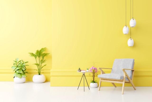 Menurut Ahli, Ini 7 Warna Cat Dinding yang Buat Suasana Rumah Lebih Semangat (18234)