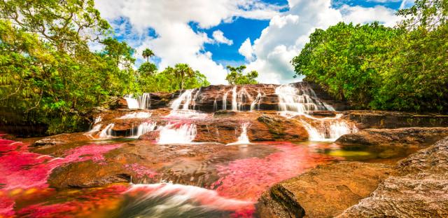 Menilik Cano Cristales, Sungai Terindah di Dunia yang Mirip Pelangi (21538)