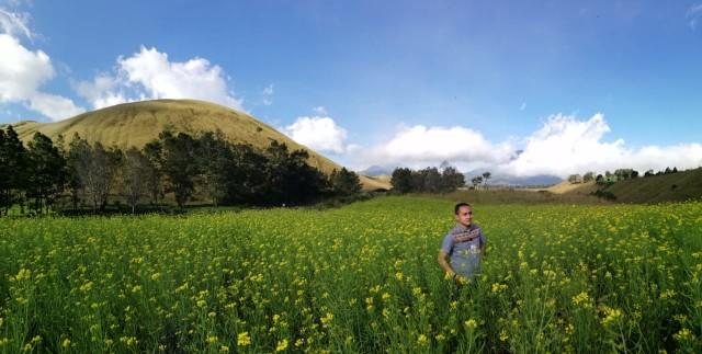 Ranu Manduro Hingga Ladang Sawi, Tempat yang Viral karena Mirip di Luar Negeri (58157)