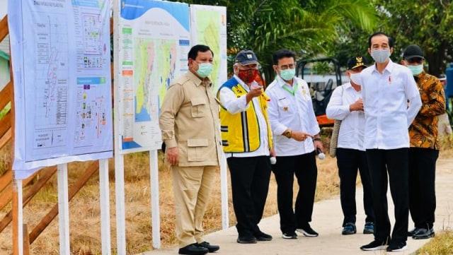 Prabowo Mau Tanam Singkong 60 Ribu Hektar, Ini Pengakuan yang Siapkan Lahan (12112)
