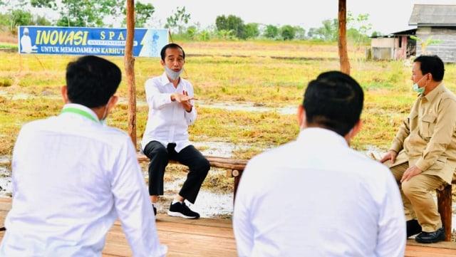 Jokowi Bangun Lumbung Pangan, Perhutani Kebagian Tanam Jagung dan Padi (49882)