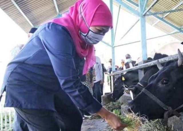 Gubernur Khofifah Optimis KPSP di Pasuruan Jadi Pusat Penyediaan Makanan Bergizi (400416)