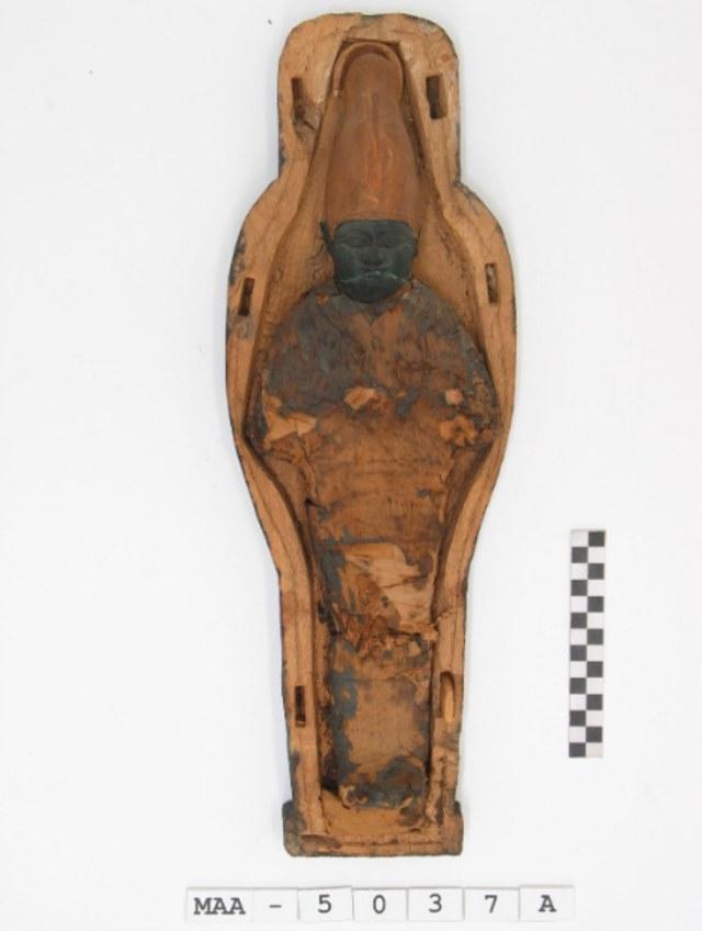 Misteri Mumi Mini Seukuran Jenglot Akhirnya Terungkap: Ternyata Bukan Manusia (129273)
