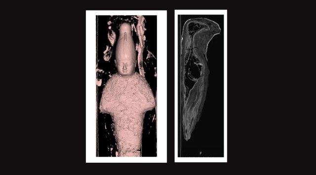 Misteri Mumi Mini Seukuran Jenglot Akhirnya Terungkap: Ternyata Bukan Manusia (129272)