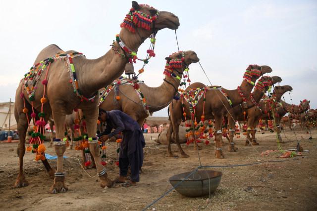 Dari China hingga Maroko, Begini Uniknya Tradisi Idul Adha Di Berbagai Negara (140110)