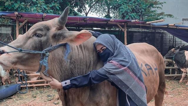 5 Berita Populer: Sandy Tumiwa Disalahkan Keluarga hingga Kurban Raffi Ahmad (222518)