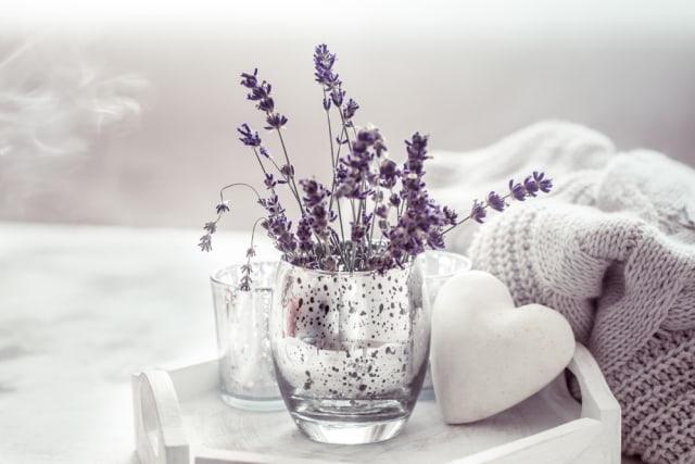 5 Tanaman Hias yang Memiliki Aroma Wangi, Bisa Jadi Pengharum Ruangan Alami (941746)