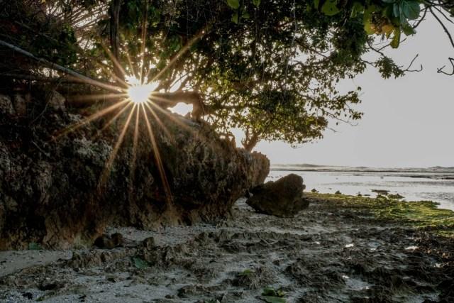 Plengkung, Surga Tersembunyi Banyuwangi yang Jadi Lokasi Liga Surfing Dunia (373283)