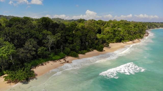Plengkung, Surga Tersembunyi Banyuwangi yang Jadi Lokasi Liga Surfing Dunia (373285)