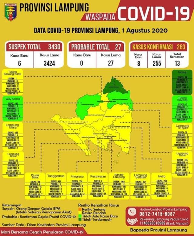 1 Kasus COVID-19 Pertama di  Kabupaten Mesuji Lampung, KTP Domisili NTB (942302)