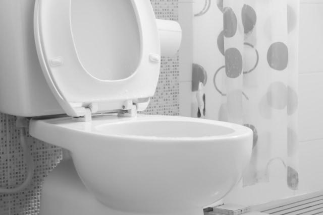 6 Hal Tentang Toilet yang Harus Kamu Ketahui Ketika Traveling ke Luar Negeri (4)