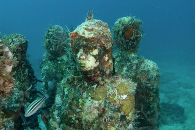 5 Museum Bawah Laut Terunik Dunia, Salah Satunya di Bangkai Kapal Abad ke-5 SM (3)