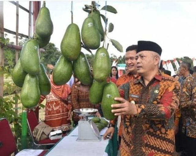 Momen Kemerdekaan, Pemkab Malang Dapat Kejutan dari Kementan (26961)