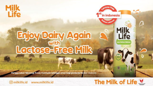 MilkLife Sajikan Susu Segar Bebas Laktosa, Apa Bedanya dengan Susu Sapi Biasa? (147242)