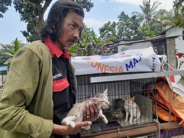 Kisah Pemulung di Yogya Hidup Nomaden, tapi Rela Rawat Kucing Jalanan yang Sakit (207393)