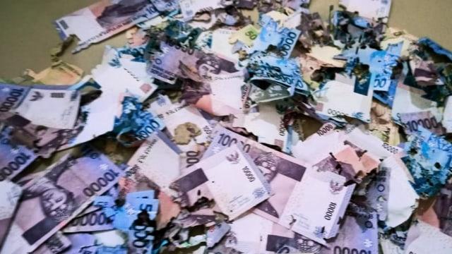 Uang Rp 3,5 Juta Warga Sulsel Ludes Dimakan Rayap karena Disimpan di Bawah Kasur (82329)