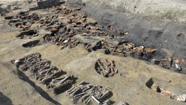 1.500 Lebih Tulang Belulang Manusia Ditemukan di Situs Kuno Osaka (159222)