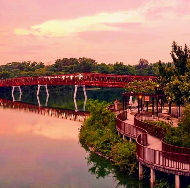 5 Spot Mengejar Sunset di Singapura (39020)
